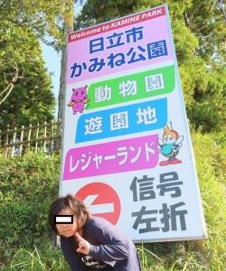 かみね公園4
