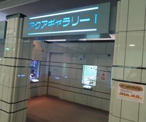 ぎょ2019-15