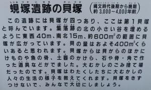 蜆塚2019-6-1