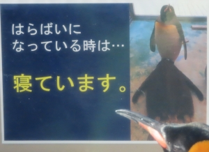 下田初回24-1
