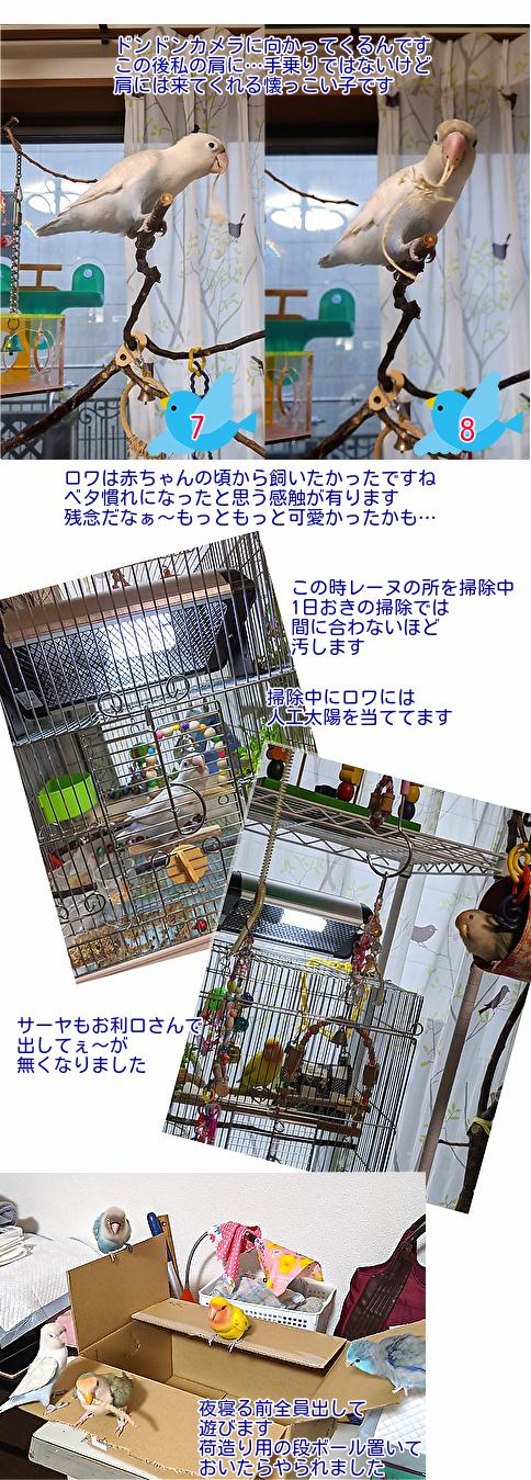 IMG_20200314_161220.jpg