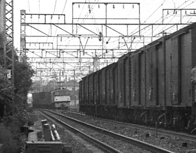 191102so09.jpg