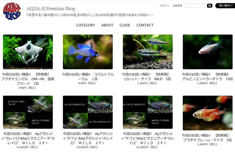 SharedScreenshot_2020031617311404d.jpg