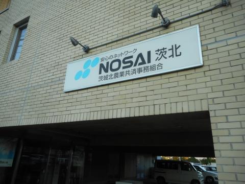 DSCN2413.jpg
