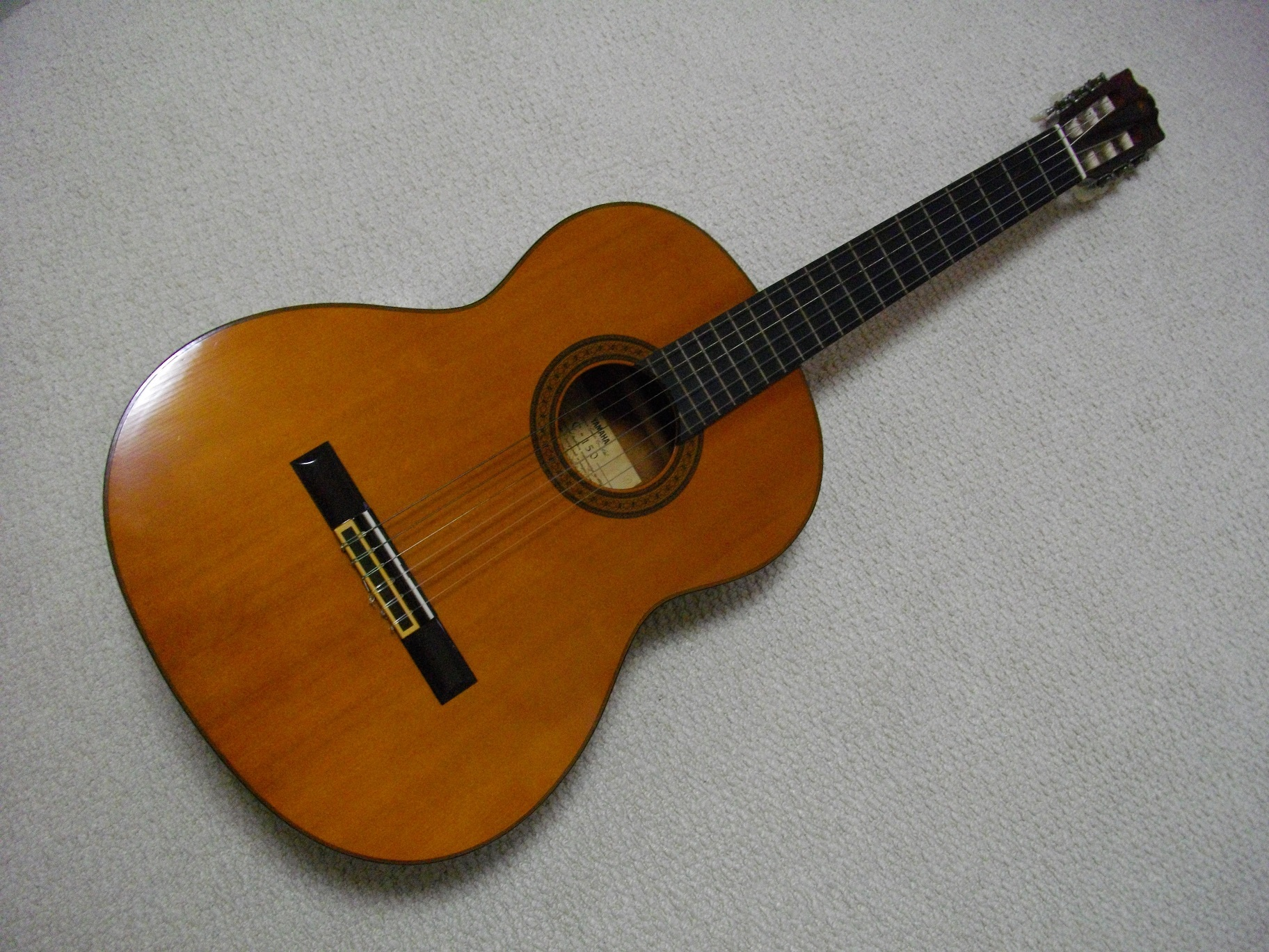 IMGP2569ギター