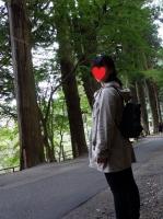 中尊寺の老杉