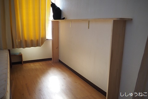 Jkと猫棚
