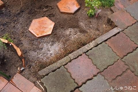 庭の敷石2
