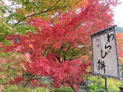 IMG_6250 永観堂