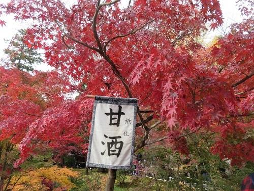 IMG_6251 永観堂