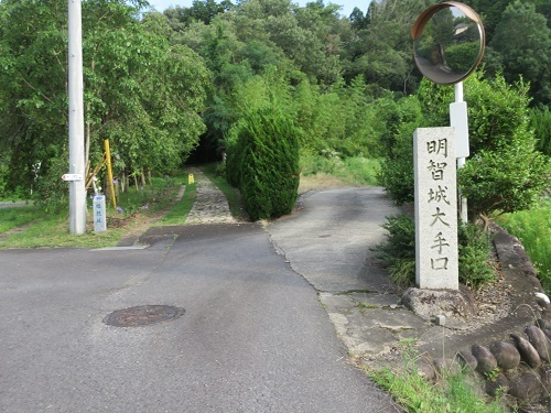 IMG_1407 明智城