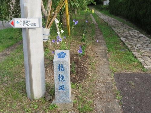 IMG_1408 明智城