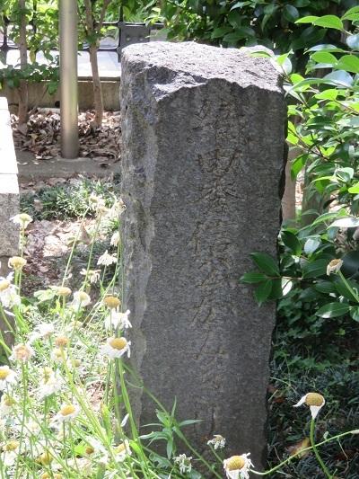 IMG_9497 円徳寺