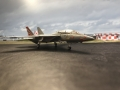 F-14A VF-111