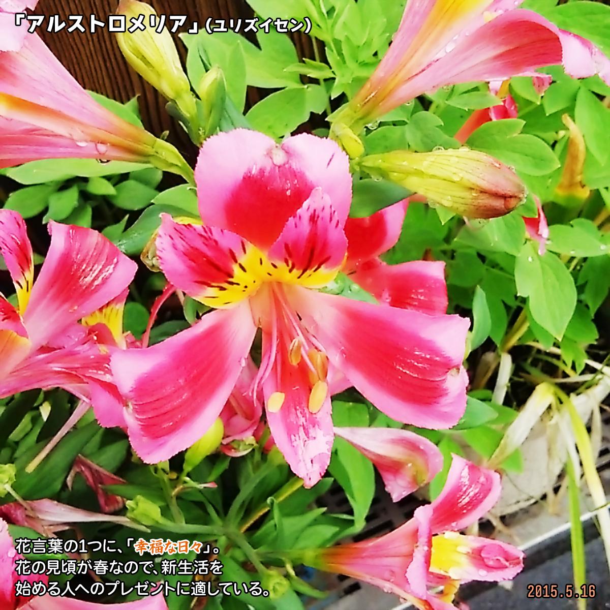 DSC_0063_20191219172735825.jpg