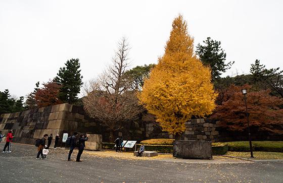 koukyo20191221-8.jpg