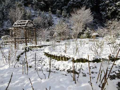 20200218 初雪の朝