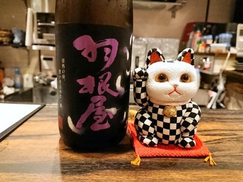 招き猫@小料理咲