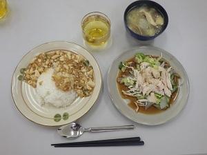 マーボー丼1-15