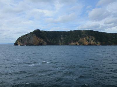 011017西郷湾入り口の岬