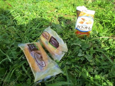 011115畑で昼食