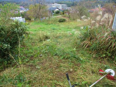 011122瓢箪かぼちゃ撤収と草刈り6