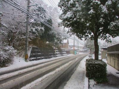 200206雪景色1