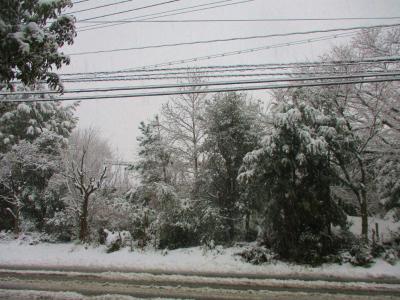 200206雪景色2