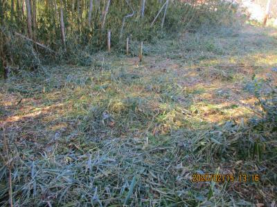 200215整備後の耕作放棄地1