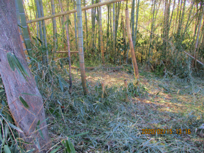200215整備後の耕作放棄地2