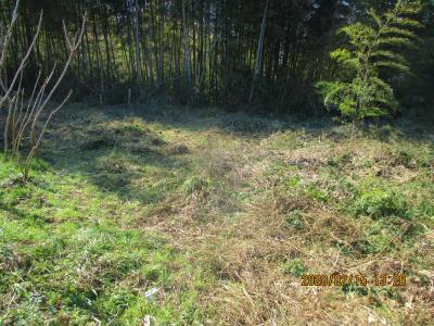 200215整備後の耕作放棄地3