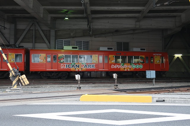 ms20(574).jpg