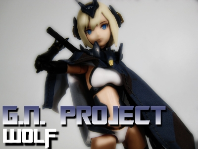 GNproject