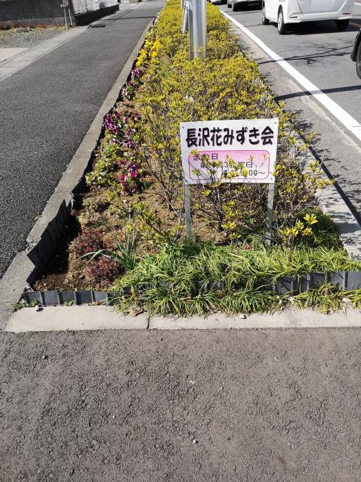 歩道のお花