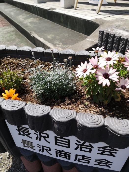 角屋さんのお花