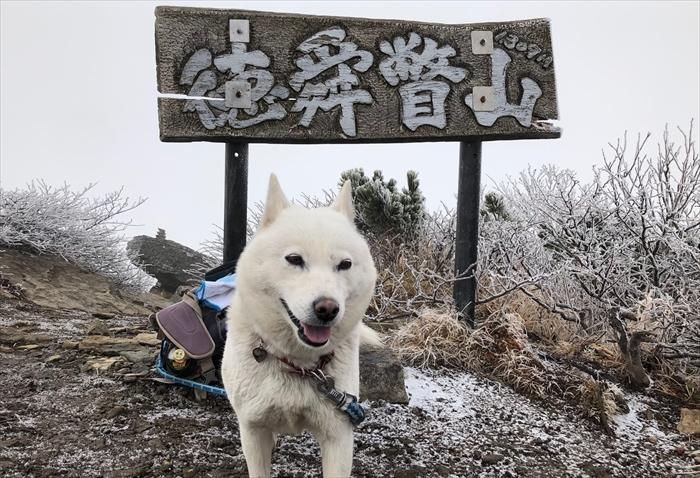 徳舜瞥山20191104 (3)_R