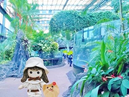 両生爬虫類館 上野動物園