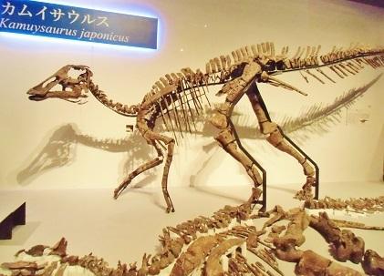 カムイサウルス