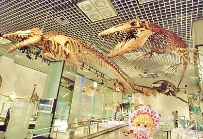ティロサウルス 右 とバシロサウルス