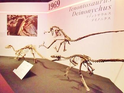 テノントサウルスを狩るデイノニクス