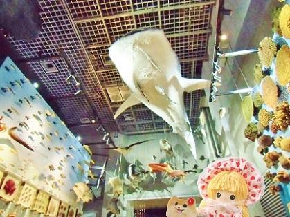 空飛ぶジンベイザメ