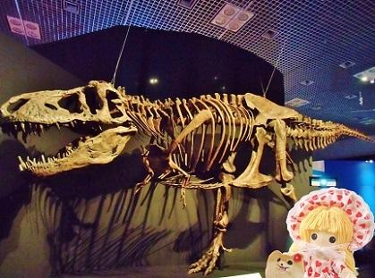 美しきティラノサウルス 恐竜博2019