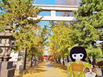 銀杏の葛飾八幡宮