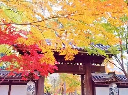 東漸寺 モミジの総門