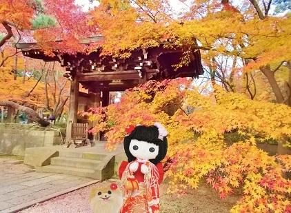 中雀門と紅葉
