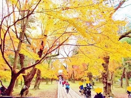 東漸寺 山門からの景色