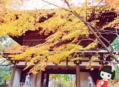 東漸寺の紅葉の山門a
