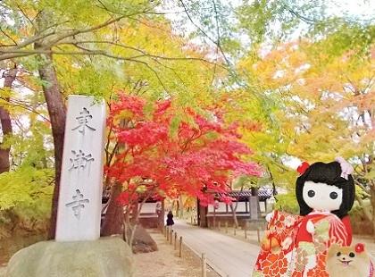 美しい紅葉の東漸寺です