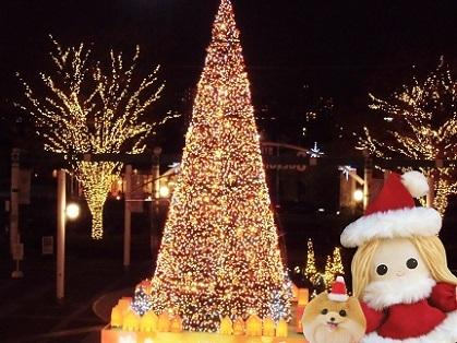 クリスマス2019b