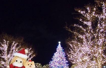 恵比寿ガーデンプレイス クリスマスd 2019